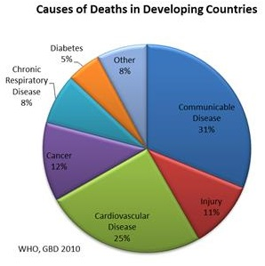 causeofdeathdevelopingcountries