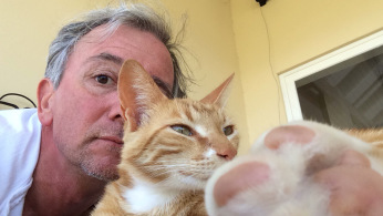 whisk & me